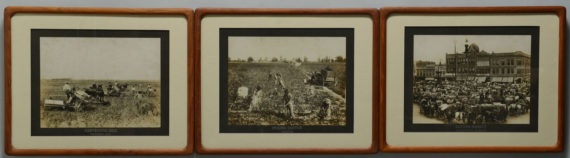 3 Albumen Prints, Southern Interest, early 20th c.