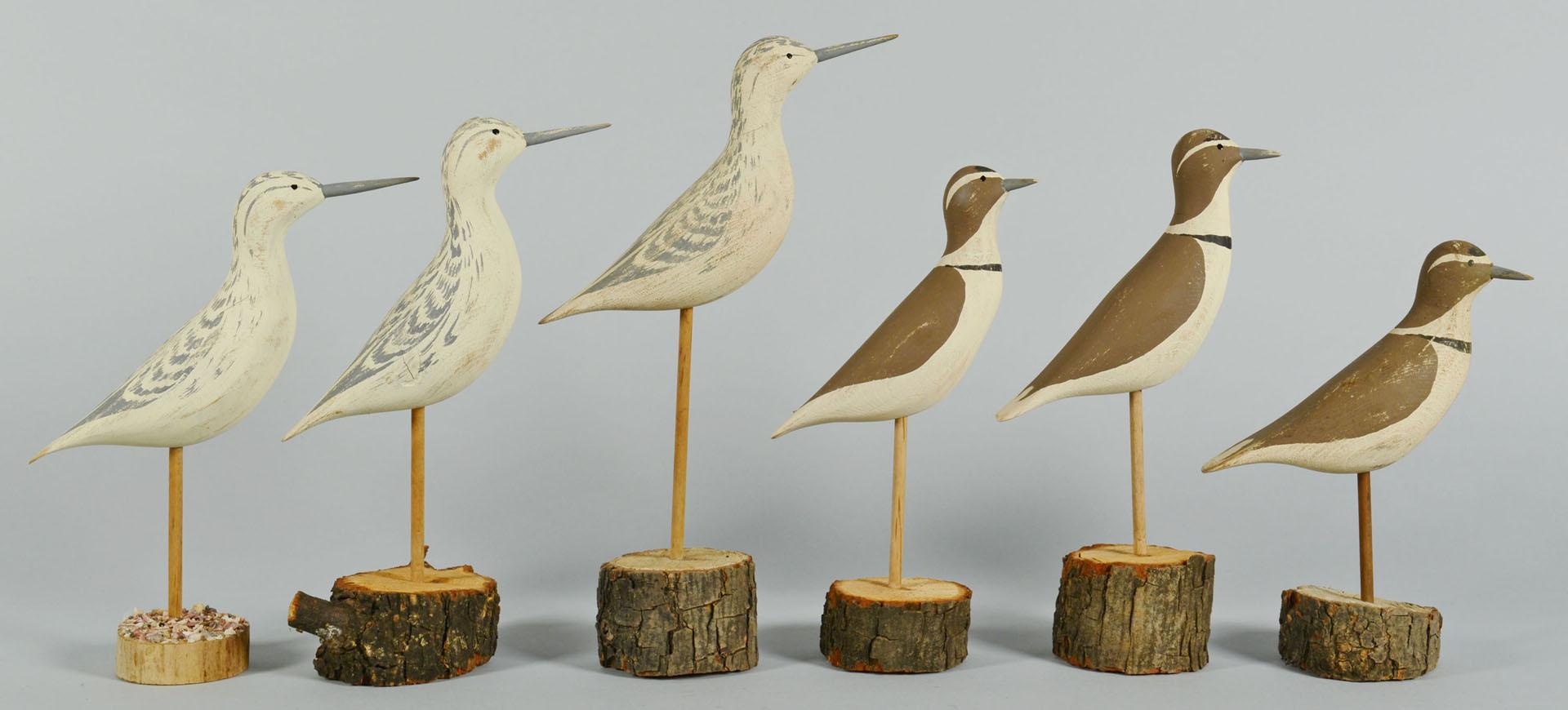 Lot 551: 13 Shorebirds by Ralph Coykendall