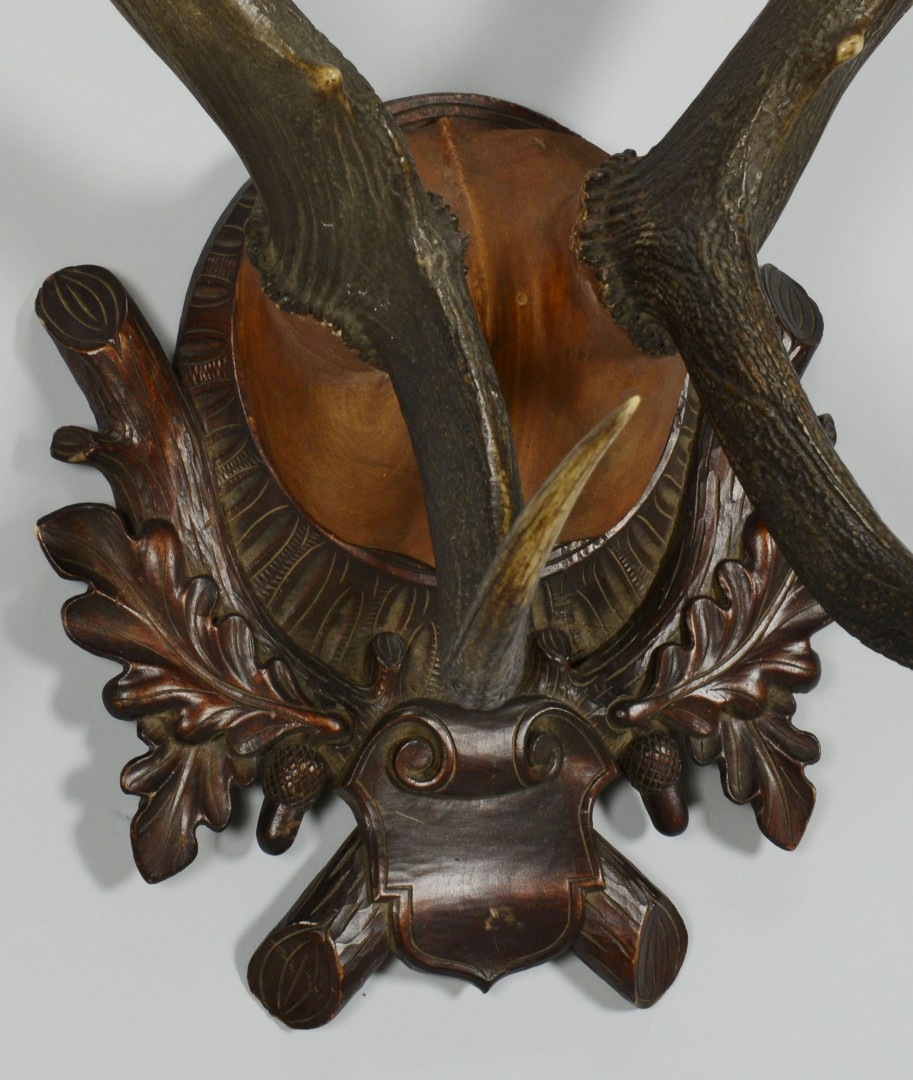Lot 552: Large Elk antlers and 4 Roebuck Antlers