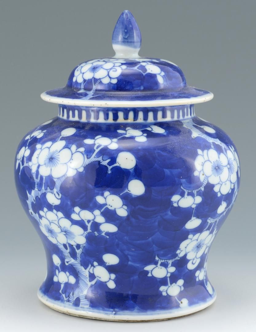 Lot 3088149: Chinese Hawthorne or Prunus Porcelain Jars