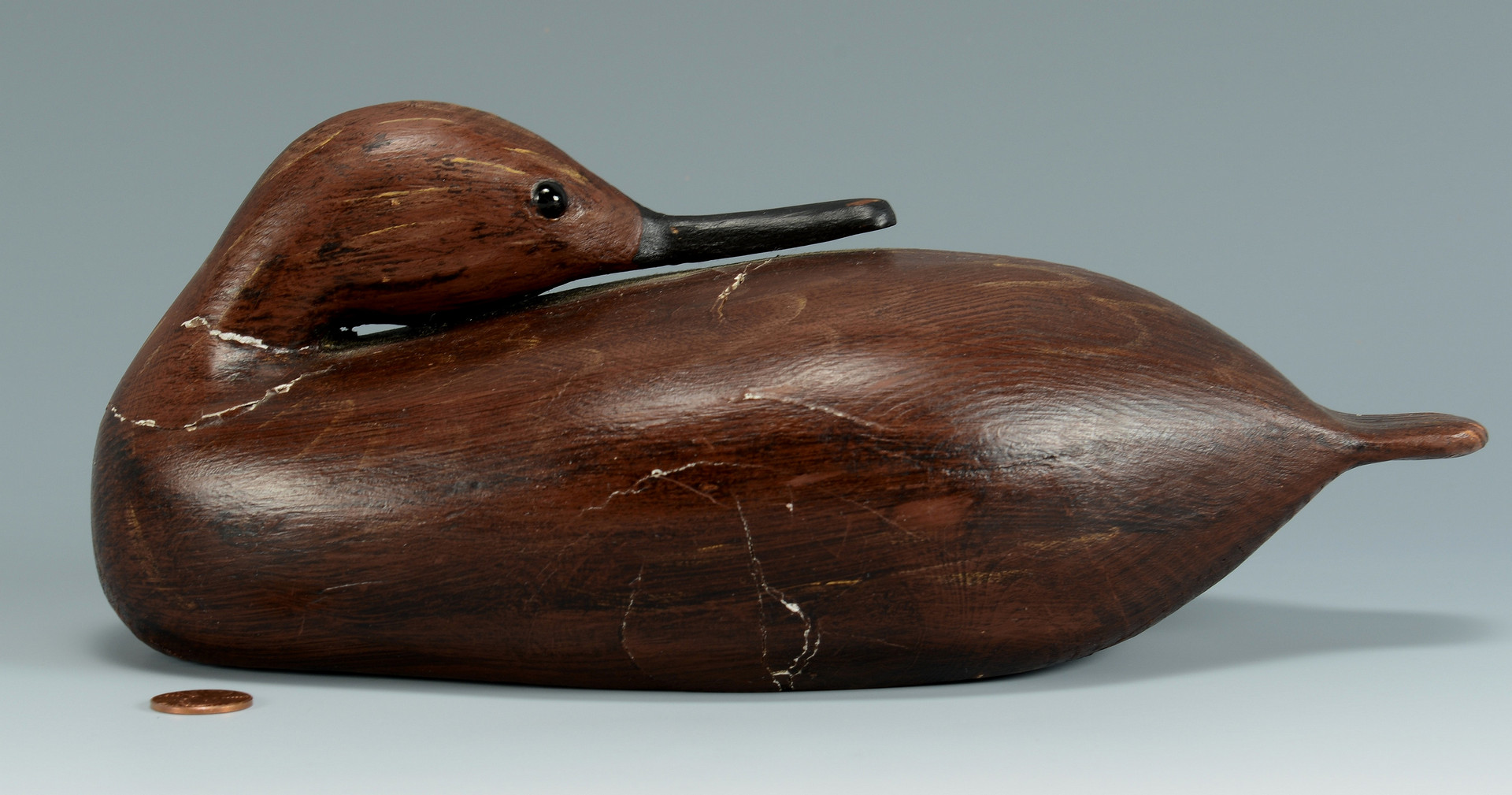 Lot 315: Guy Taplin, Sleeping Teal