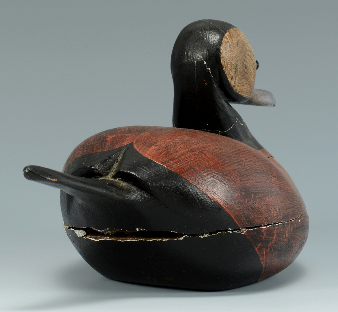 Lot 316: Guy Taplin, Ruddy Duck