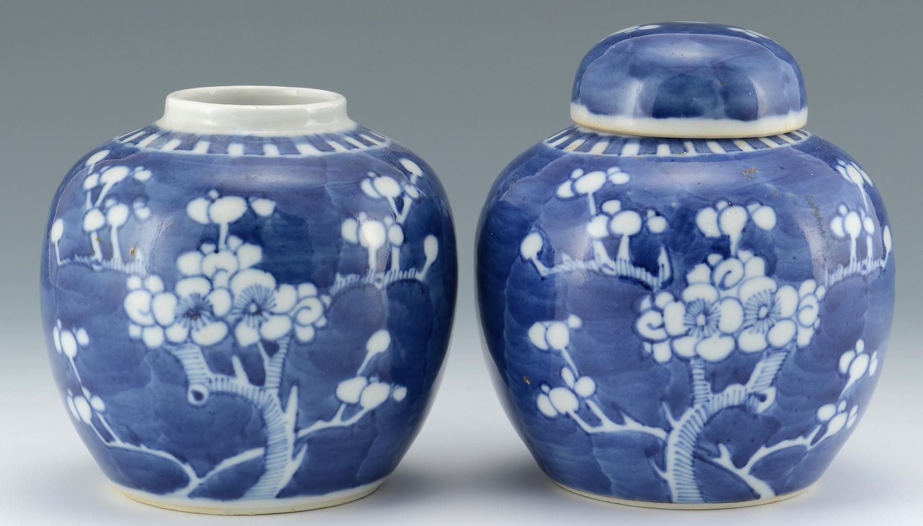 Lot 494: Chinese Hawthorne or Prunus Porcelain Jars