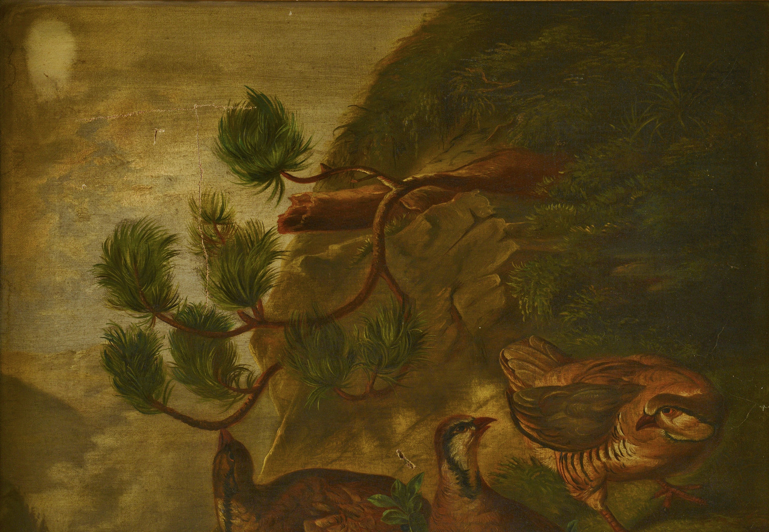 Lot 635: American School, Grouse on Cliff, 19th c.