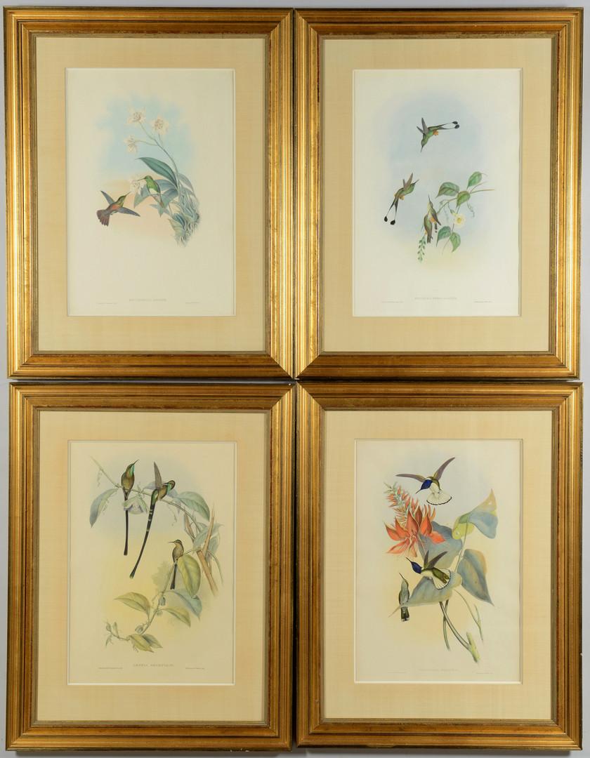 Lot 864: 4 Gould Hummingbird Lithographs