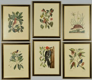 Lot 866: 6 Colonial Williamsburg Reproduction Bird Prints