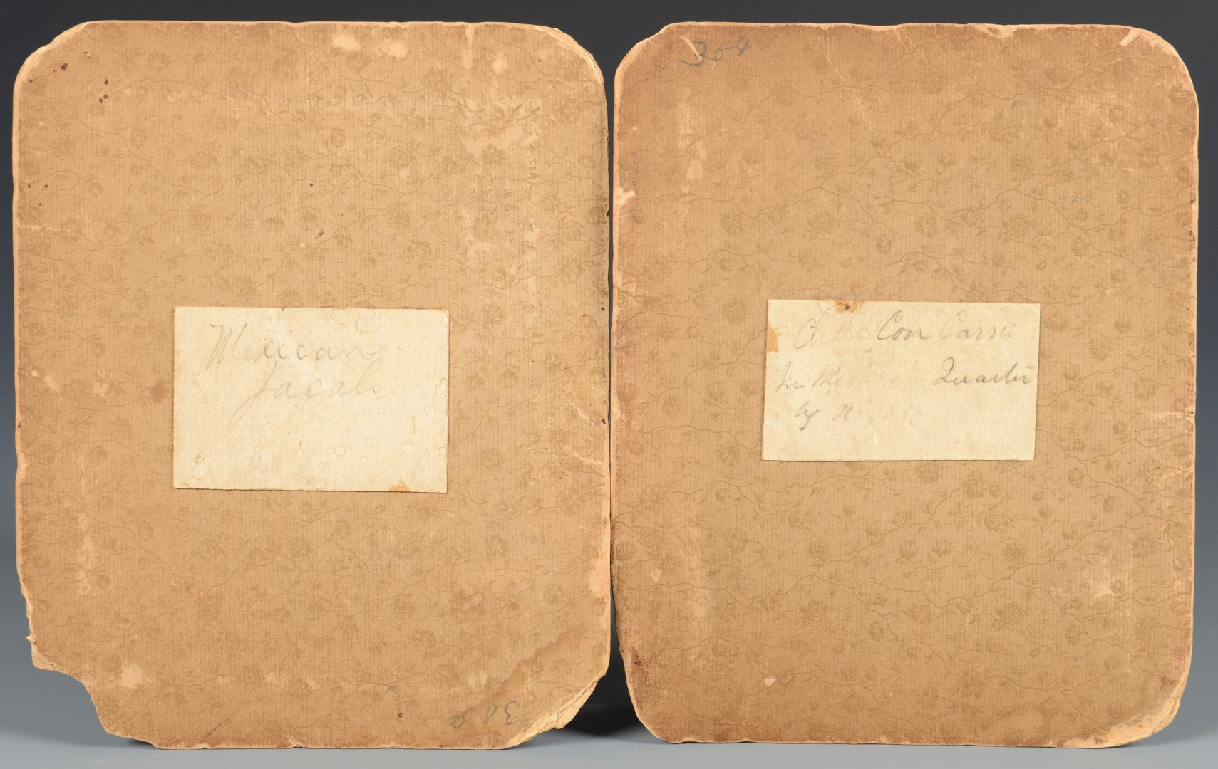 Lot 506: 1901 TX Confederate Surgeon Book, Alamo Watercolor