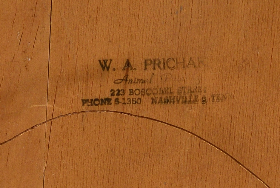 Lot 677: W. Prichard Horse Portrait, Nashville, TN