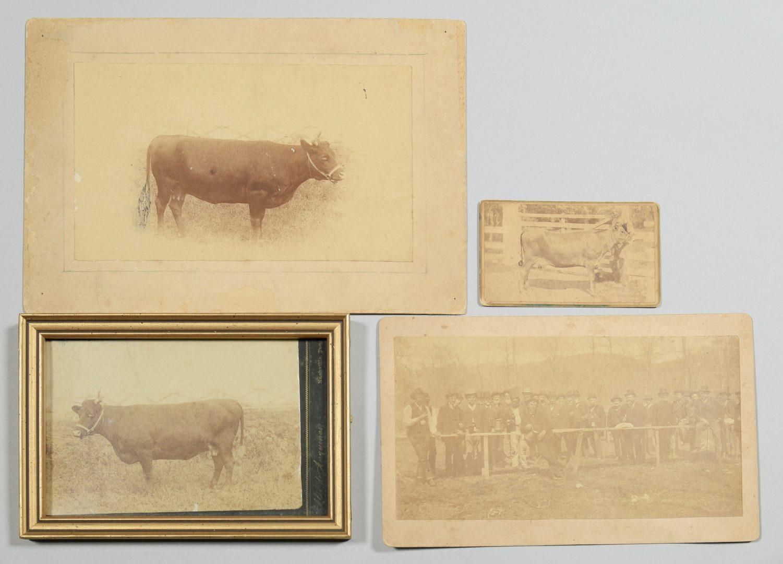 Lot 238: Devon Farm Archive