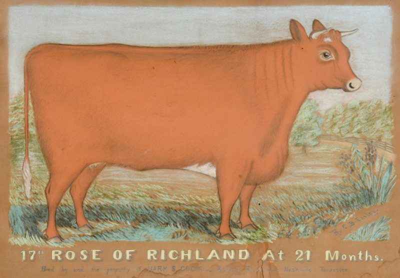 Lot 533: Prize Cow Ptg, Rose of Richland TN