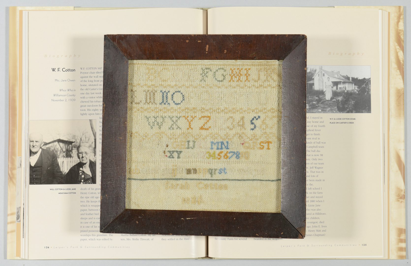 Lot 556: Williamson TN Sampler, Civil War era