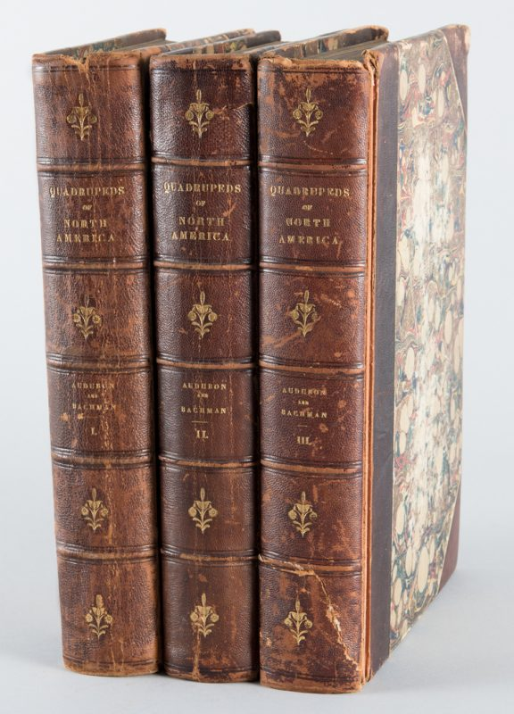 Lot 555: J.J. Audubon: 3 Vols. Quadrupeds of America