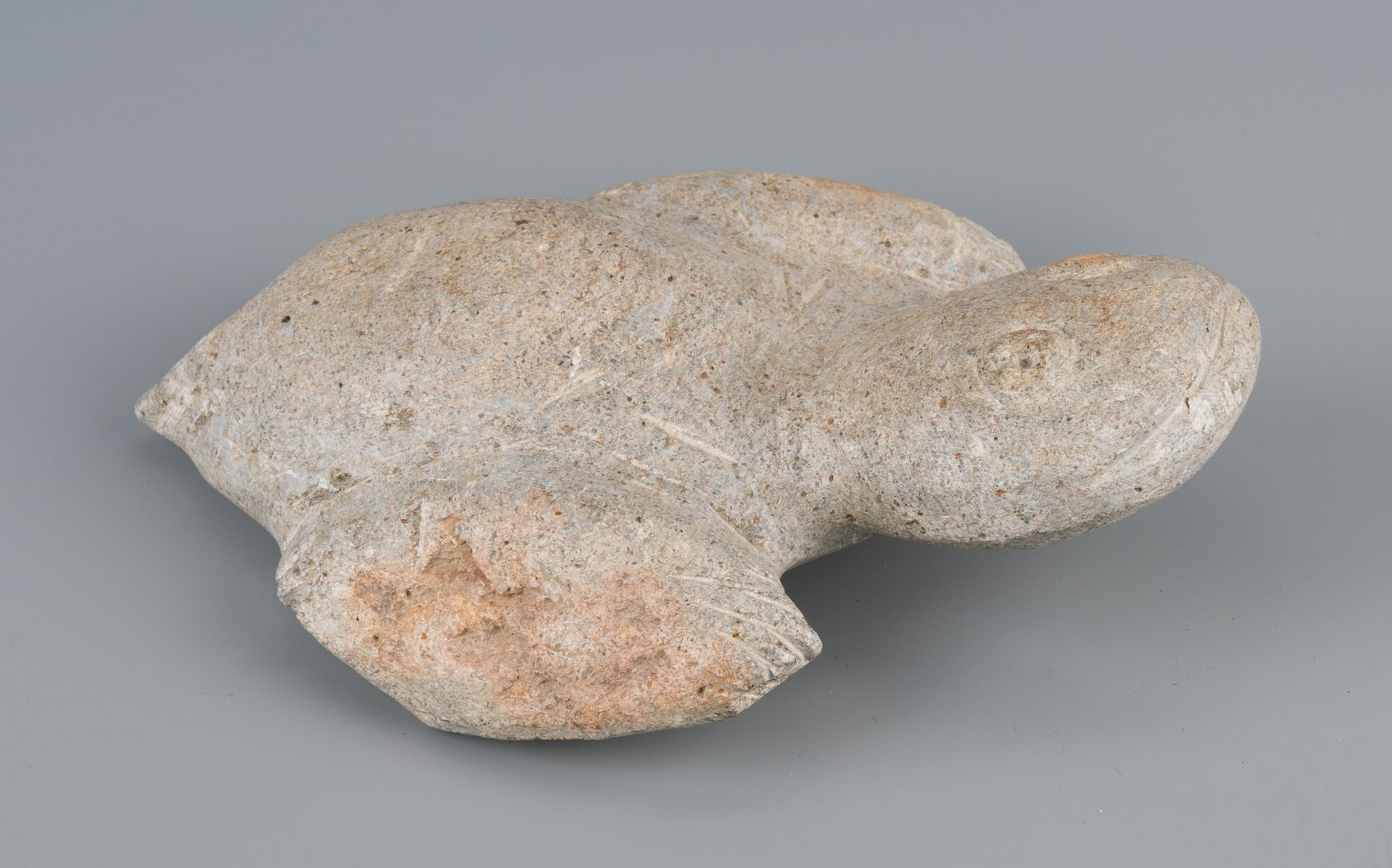 Lot 643: Raymond Coins, Folk Art Turtle Carving