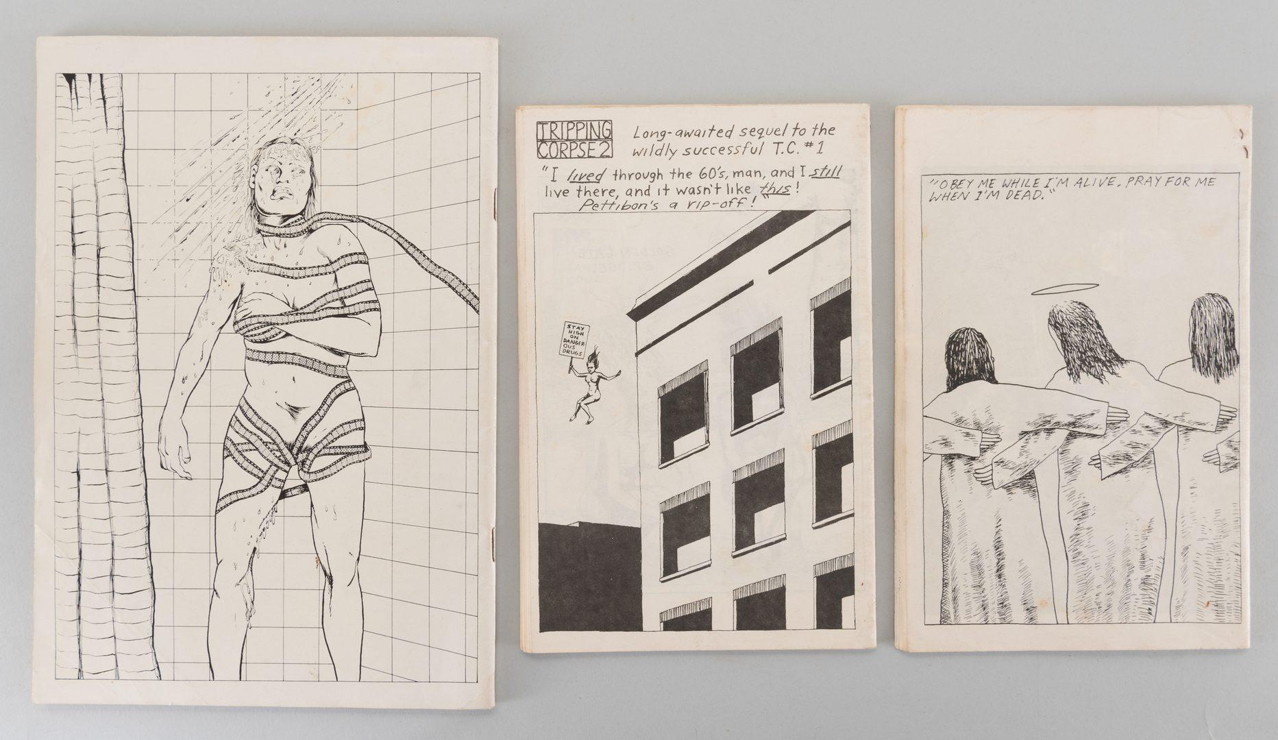 Lot 852: 3 Raymond Pettibon Artist Books