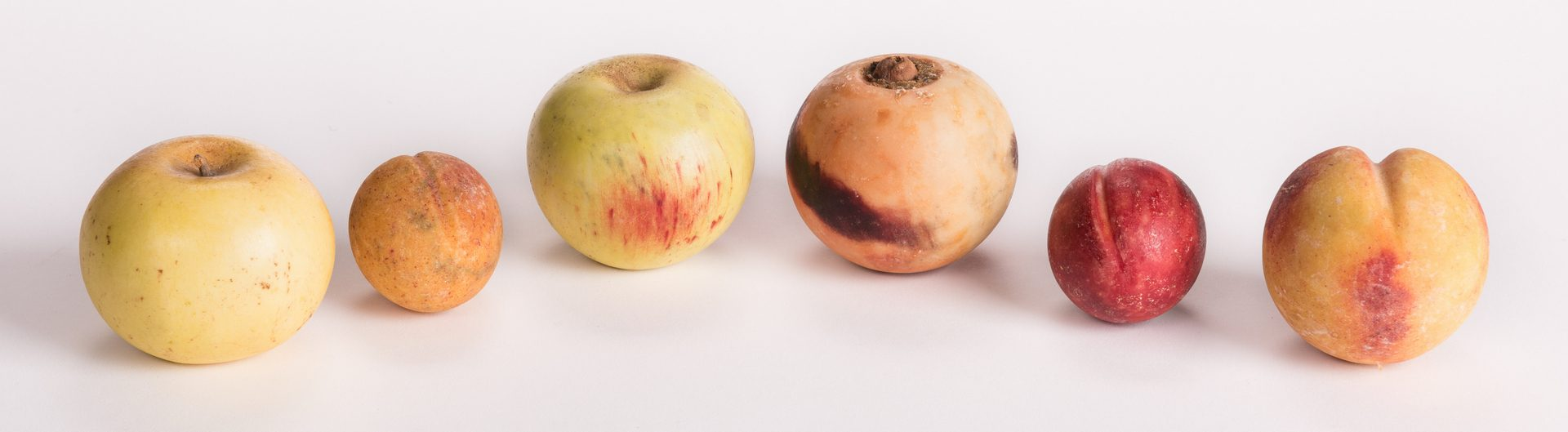 Lot 91: Group of Stone Fruit, 13 pieces