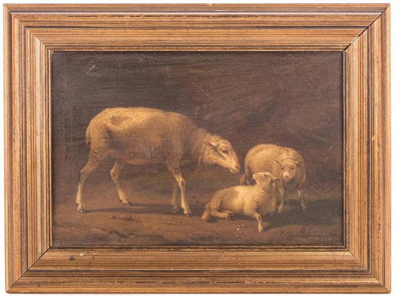 Lot 162: Cornelius van Leemputten, O/B, Sheep