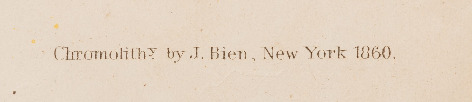 Lot 302: Audubon Bien print, Ferruginous Thrush