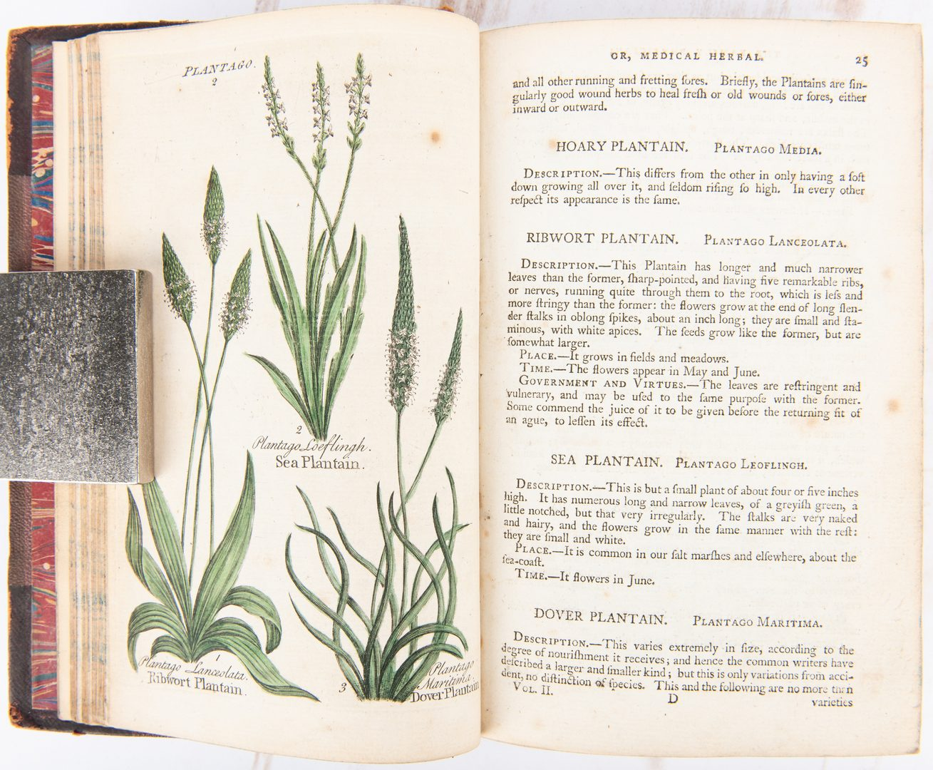 Lot 101: 8 Herbal/Floral Related Books