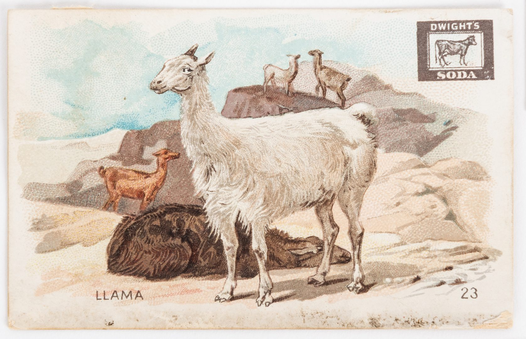 Lot 406: Collection of 893 Advertising Trade Cards