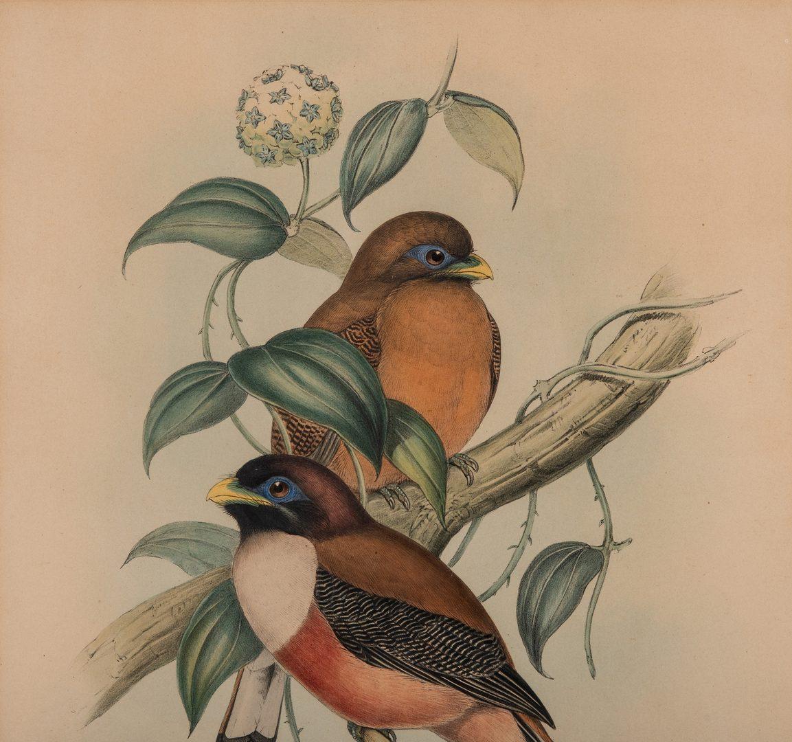 Lot 84: 2 Gould & Richter Bird Lithographs