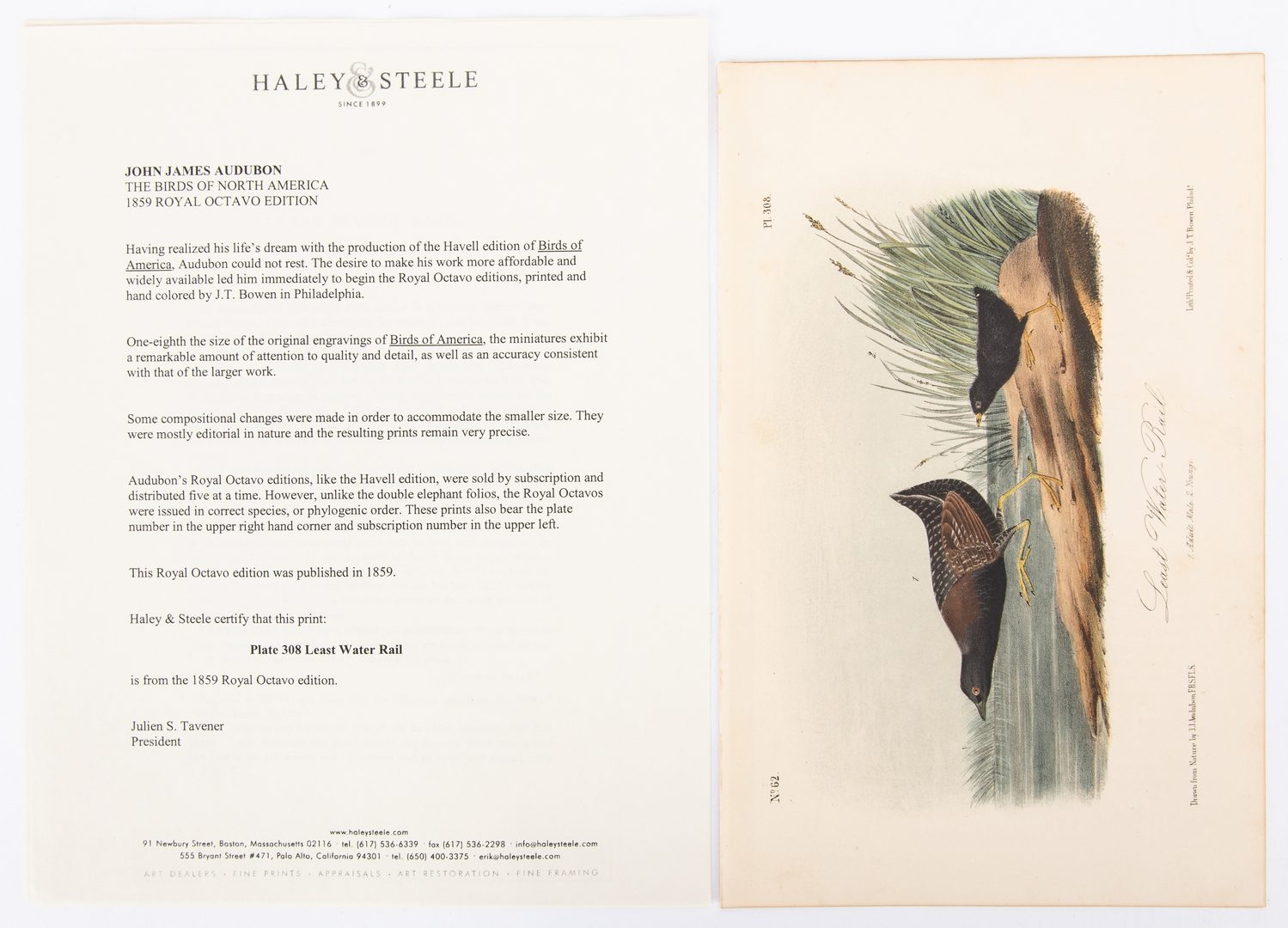 Lot 85: 4 Audubon Royal Octavo Prints, 1859