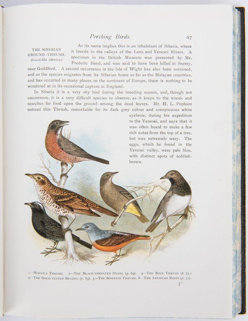 Lot 88: 3 Bird/Natural History Books, inc. Goldsmith, Sharp, & Wood