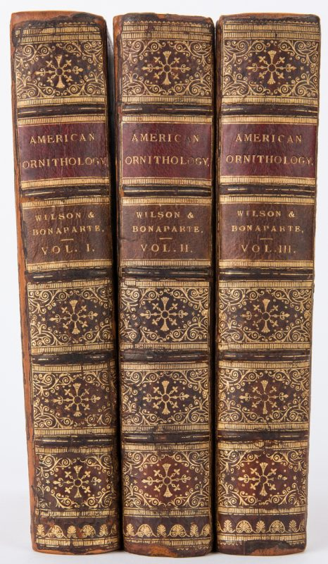 Lot 90: Wilson & Bonaparte, American Ornithology, Vol. I-III, 1877