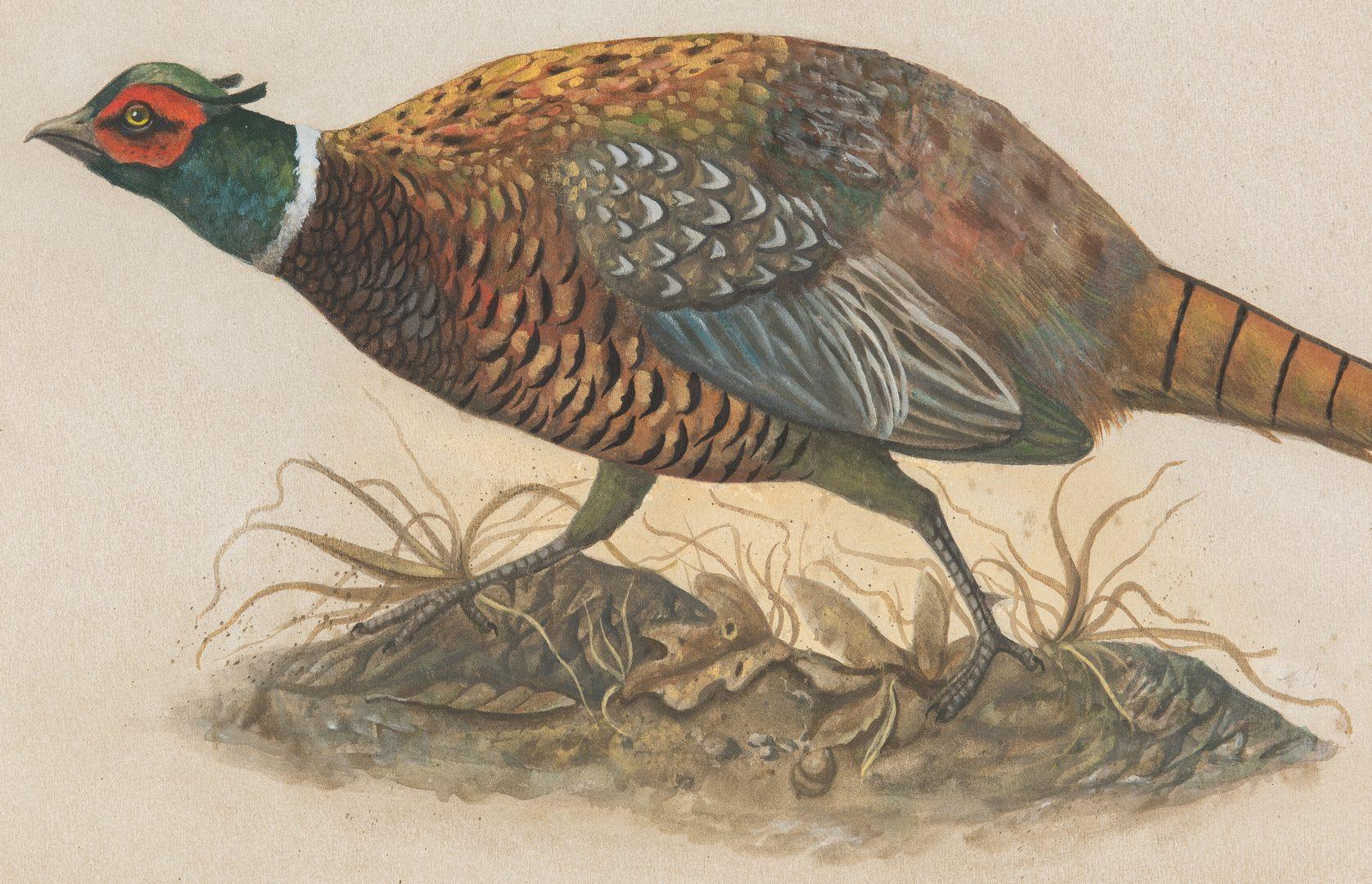 Lot 427: Werner Wildner Watercolor, Pheasant