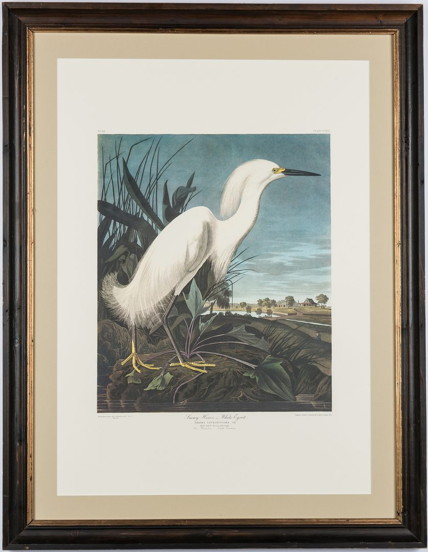 Lot 692: 2 prints after John J. Audubon, Princeton