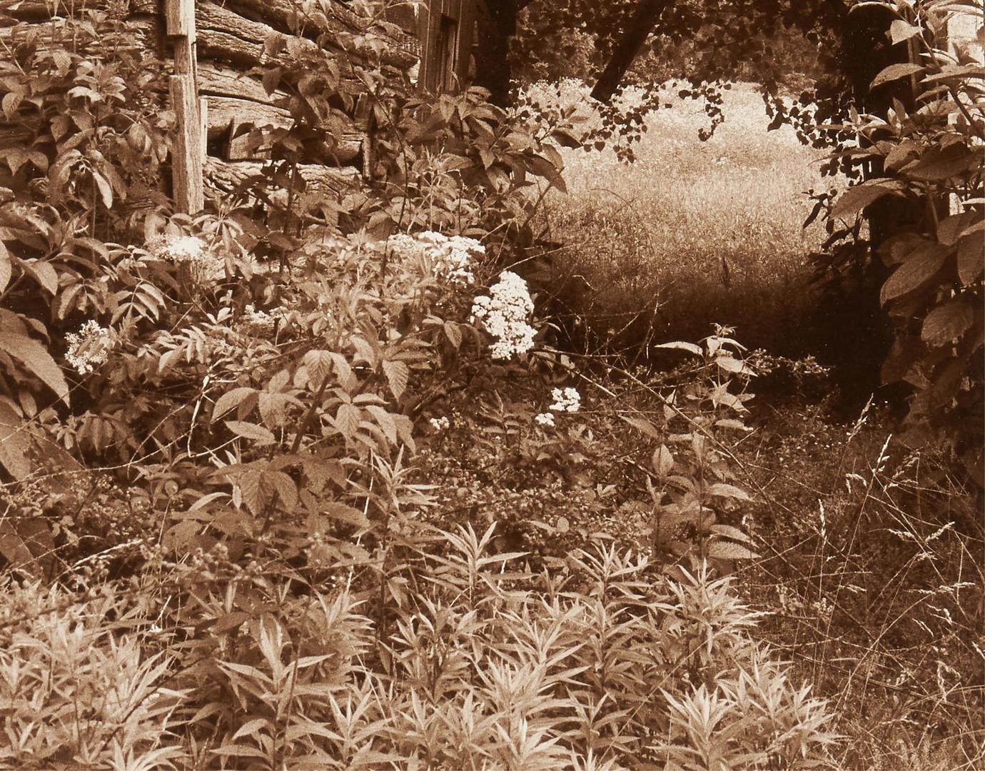 Lot 623: 2 Maria von Matthiessen Photographs, Southern Barns