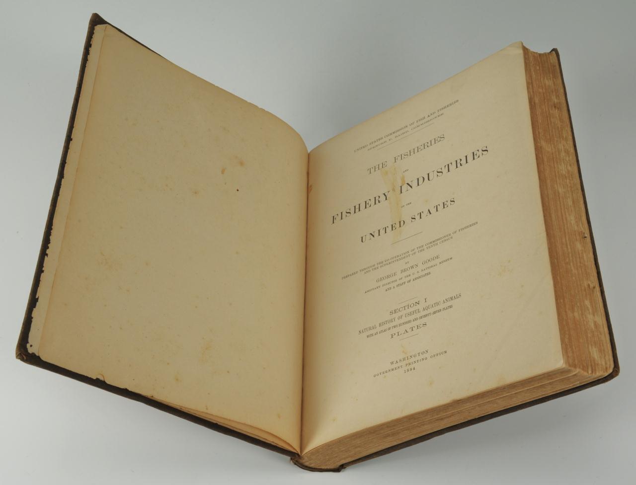 Lot 160: Rare book on American Fish, 277 plates