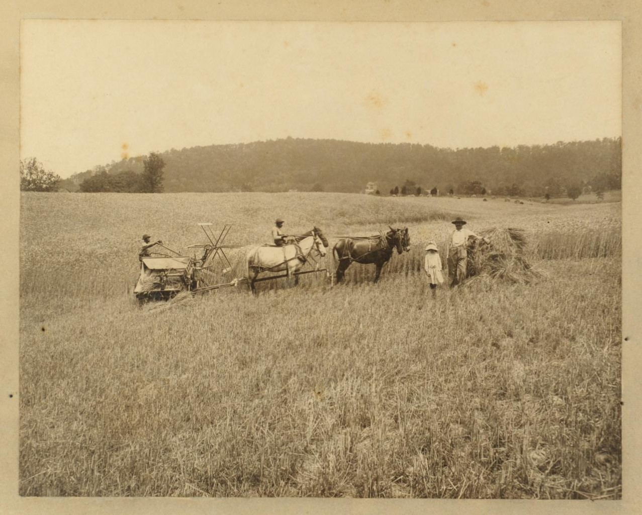 Lot 370: TN Knaffl Brothers Photo of African Americans