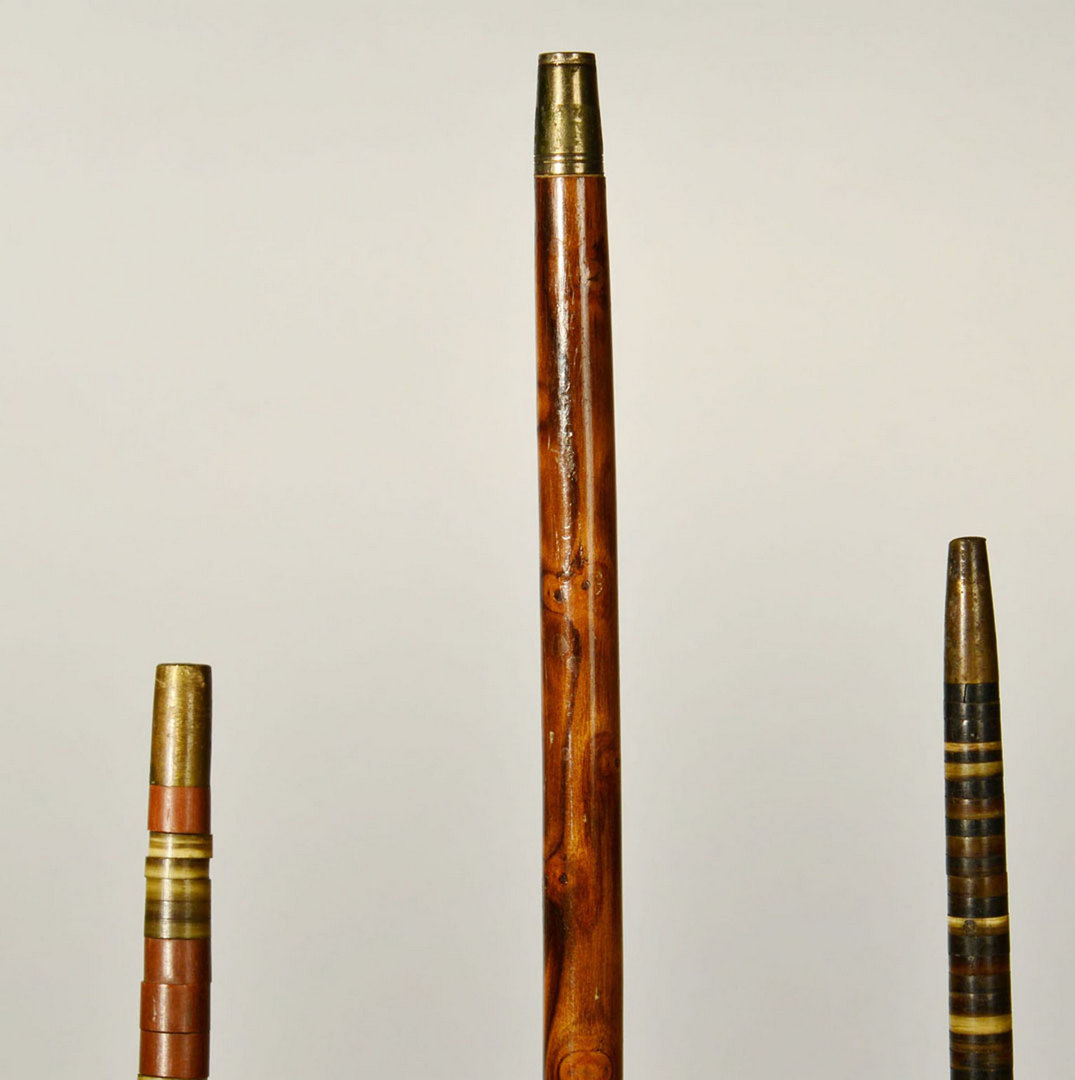 Lot 266: 2 Stacked Horn Disc Canes and 1 Dog Whistle Cane