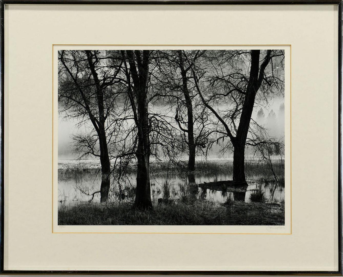 Lot 367: John Sexton Landscape Gelatin Silver Print