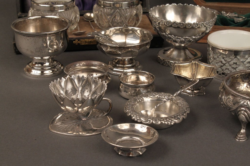 Lot 230: Large Lot of silver salts (46 pcs.)