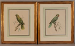 Lot 466: Pair of French Bird Lithographs