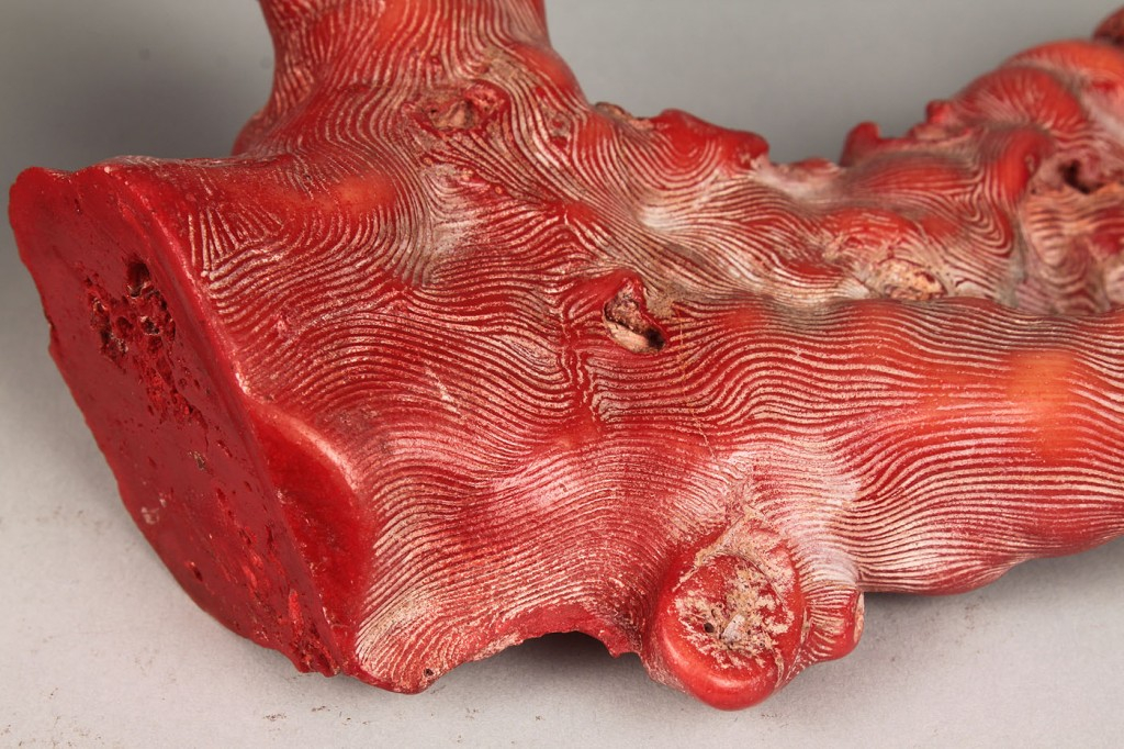 Lot 533: 2 soapstone wax seals & 3 Natural Corals