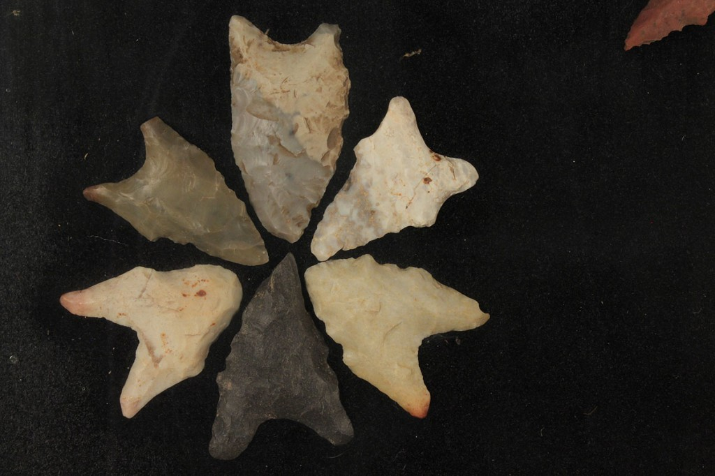 Lot 501: Collection of Native American Points, some Dalton