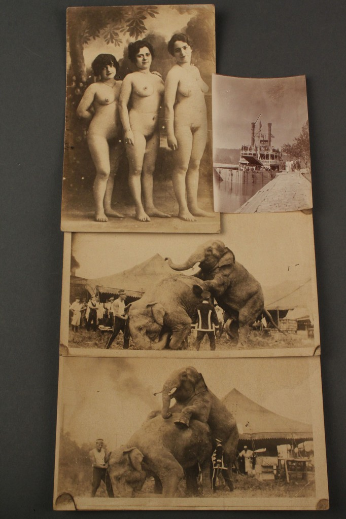 Lot 592: Postcard Collection: Circus, Erotic & Southern