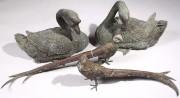 181: Pair Austrian Bronze Pheasants and Bronze Geese