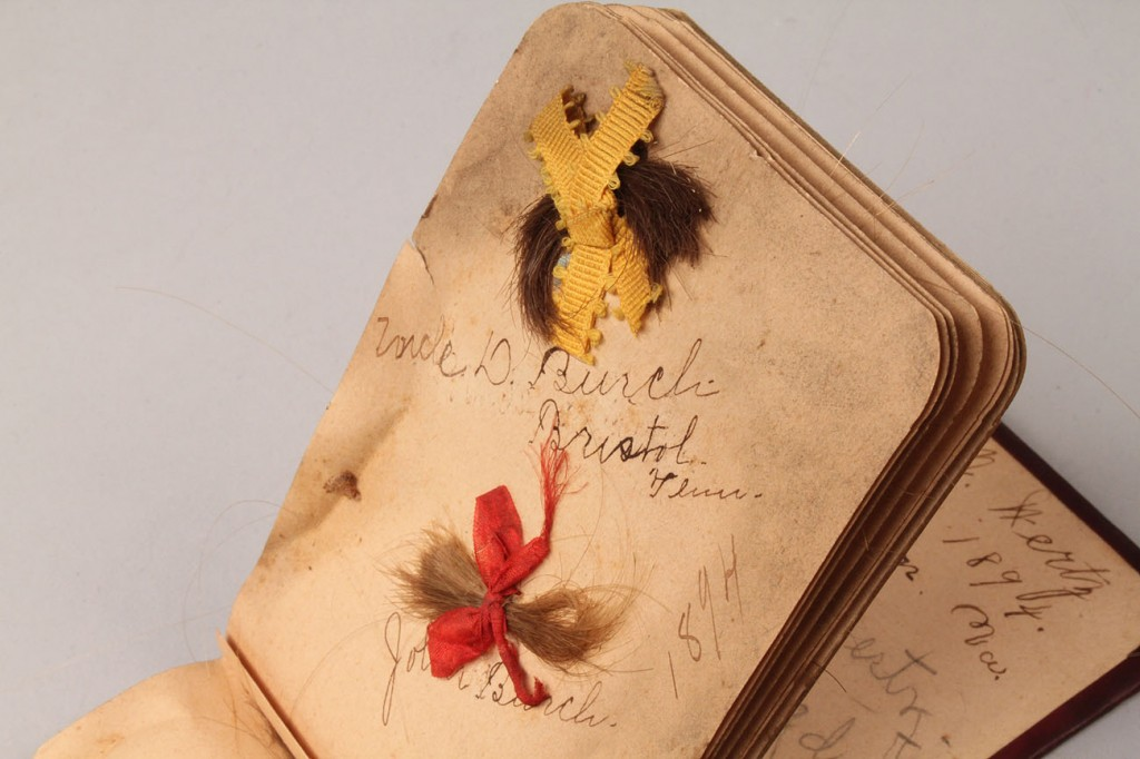 Lot 323: Victorian Hair Album, Southern