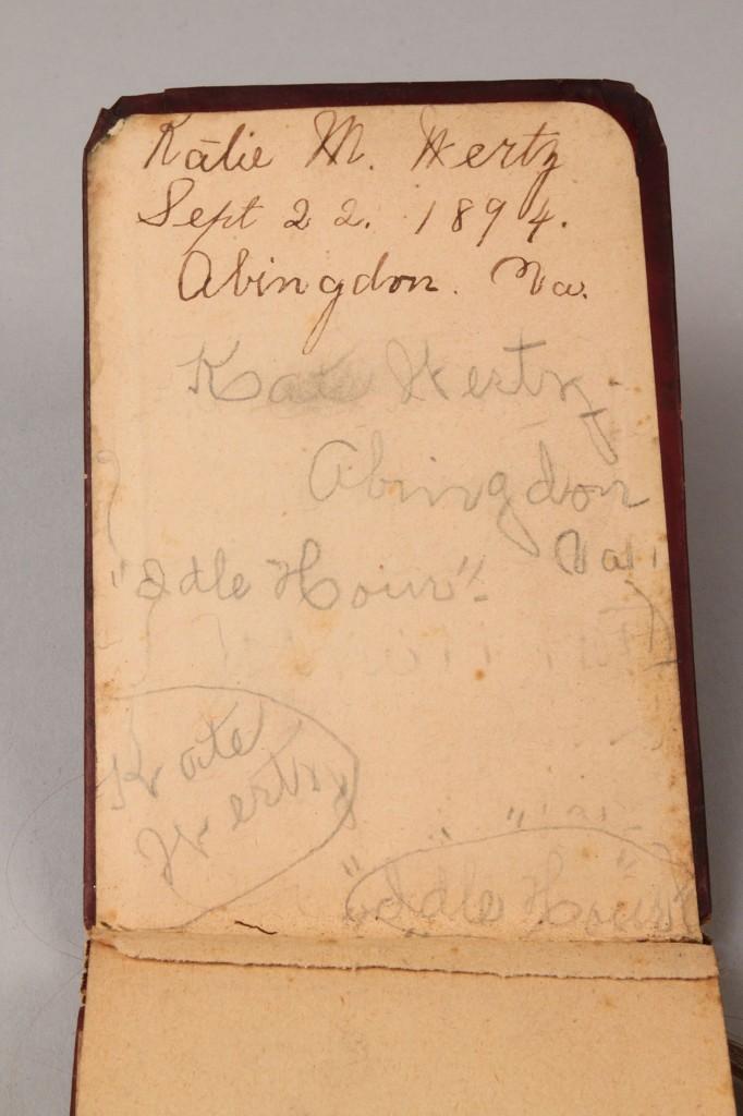 Lot 323: Victorian Hair Album, Southern