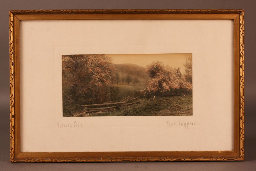 Lot 673: Lot of 2 framed tinted photographs