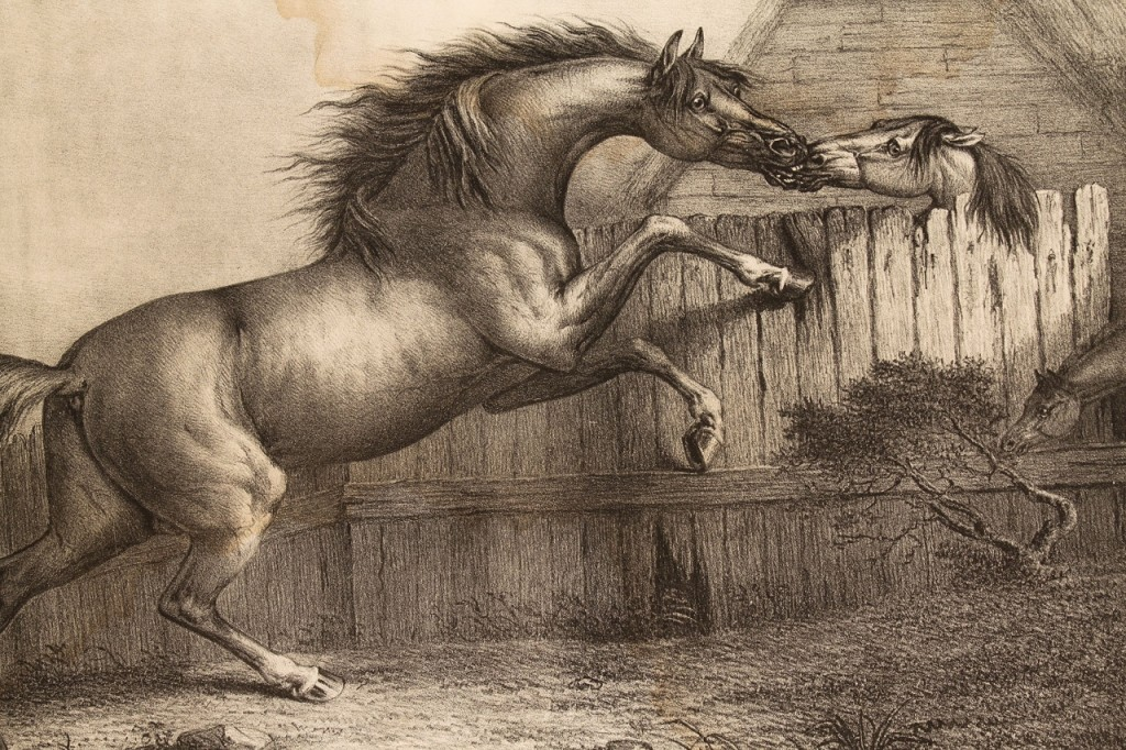 "Lot 335: 1827 Folio of horse prints: ""Passions of the Horse"