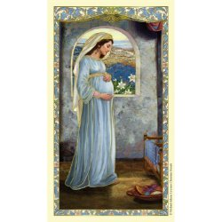 Mary, Mother of God Laminated Holy Cards - 25/pk