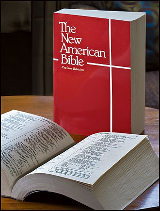 american outlaw bible essays - the poisonwood bible as a catalog of romanticism in the poisonwood bible, by barbara kingsolver, the romantic standards that are associated with literature during the american renaissance are evident.