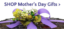 Mothers Day Gifts Gifts