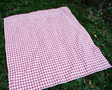 Traditional Gingham Picnic Blanket- Red
