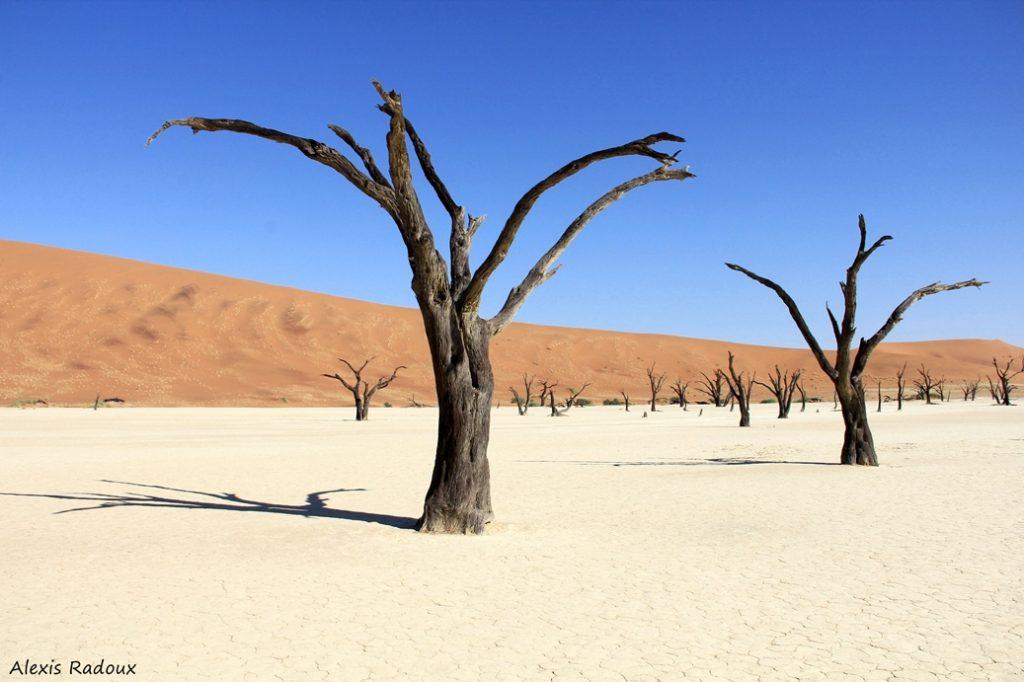 NAMIBIA (AFRICA OVERLAND)