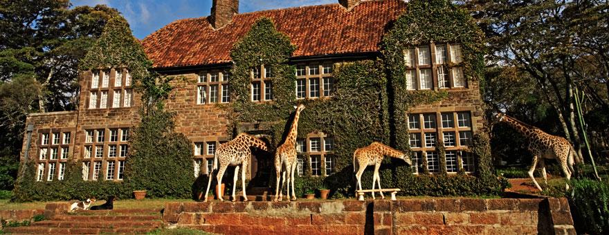 Foto Giraffe Manor